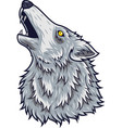 cartoon angry wolf head mascot vector image