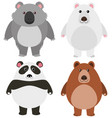 different kinds of bears on white background vector image vector image