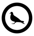 dove icon black color in circle vector image vector image