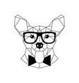 polygonal corgi dog in fashion glasses and bow vector image vector image