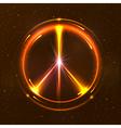 Shining pacific symbol vector image vector image
