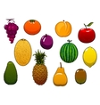 Sweet fresh fruits and berries in cartoon style vector image vector image