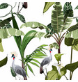 tropical botanical wild birds palm tree pattern vector image vector image