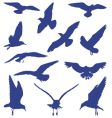 birds seagulls in blue silhouettes vector image