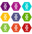 dna strand icon set color hexahedron vector image vector image