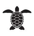 graphic sea turtle vector image