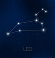 Leo constellation in night sky vector image vector image