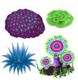 set of colorful corals and polyps isolated on vector image