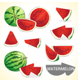 Set of watermelon in various styles vector image vector image