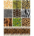 Set seamless patterns animals vector image vector image