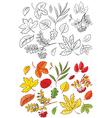 leaves sets vector image