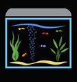 aquarium with fish and water plants art concept vector image vector image