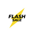 flash sale banner icon design template isolated vector image vector image