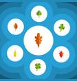 flat icon foliage set of foliage hickory leaf vector image vector image