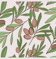 food olive pattern natural green plant vector image