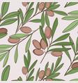 food olive pattern natural green plant vector image vector image