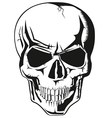 Human skull new vector | Price: 1 Credit (USD $1)