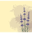 Lavender sprigs on the ink spots background vector image