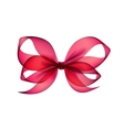 Pink Transparent Bow Top View on White Background vector image vector image