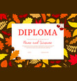 school diploma with autumn leaves certificate vector image vector image