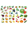 berries fruits and vegetables large collection vector image vector image