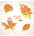 colorful set watercolor leaves vector image