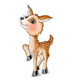 cute kind character fawn red vector image vector image