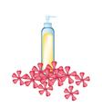 Essential oil and Red Rose Geranium vector image