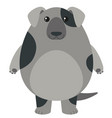 gray dog on white background vector image vector image