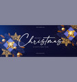 merry christmas design template with fir tree vector image vector image