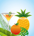tropical drink vector image