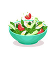 vegetable salad with egg tomato cucmber and vector image