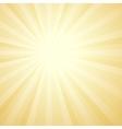 Sunburst Background Card Template vector image
