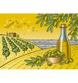 Olive harvest landscape vector image vector image