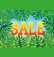 summer banner for sales vector image