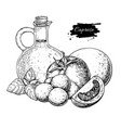 caprese salad ingredients drawing vector image