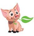 cartoon piglet vector image vector image