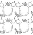 cherries and pomegranates black and white vector image vector image