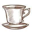 coffee or tea cup on saucer isolated sketch hot vector image