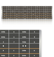 Notes on guitar fingerboard vector image