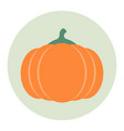 pumpkin icon flat vector image