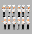 Set of a chef cartoon character vector image