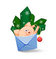 a funny pig jumping out of an envelope to decorate vector image vector image