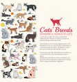 breed cats icons sticker set cute animal vector image
