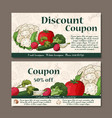coupon template with vegetables set of vector image vector image