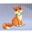 Cute cartoon red cat vector image vector image
