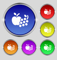 Fruits web icons sign Round symbol on bright vector image vector image