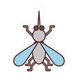 house fly insect and animal disturb cartoon vector image