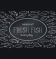 layout hand drawn fish blackboard vector image vector image