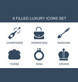 luxury icons vector image vector image